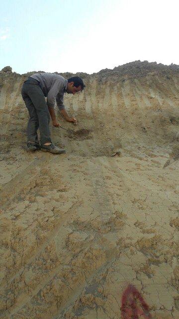 کشف یک لایه باستانی در یک روستای ساسانی