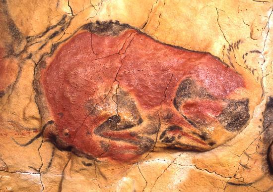تصویر 7- گاو وحشی زخمی، غار آلتامیرا، اسپانیا، حدود ۱۵ تا 10 هزار سال پیش از میلاد