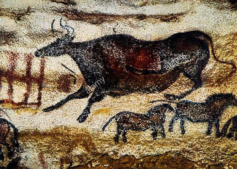 تصویر ۵- دوره پارینه سنگی: تالار گاوها