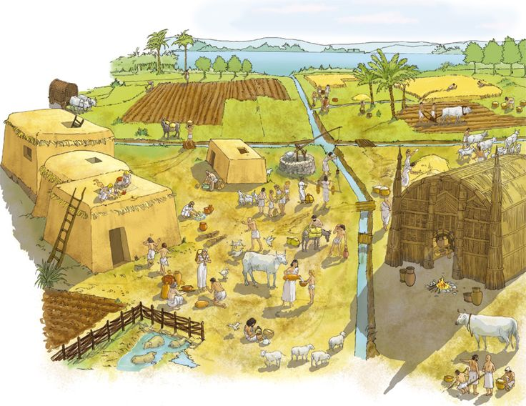 نقاشی از توسعه آبیاری و کشاورزی در میانرودان