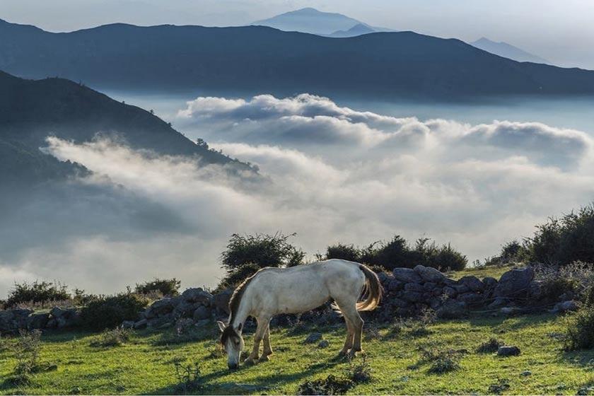 «فیلبند»، دهکدهای معلق در ابرها