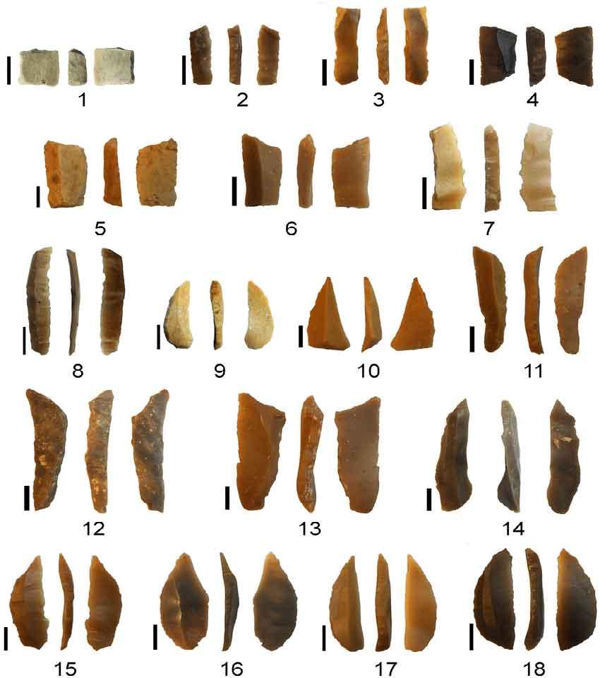 ریز ابزارهای سنگی بدست آمده از سواحل شرقی مدیترانه متعلق به دوران پارینه سنگی پایانی