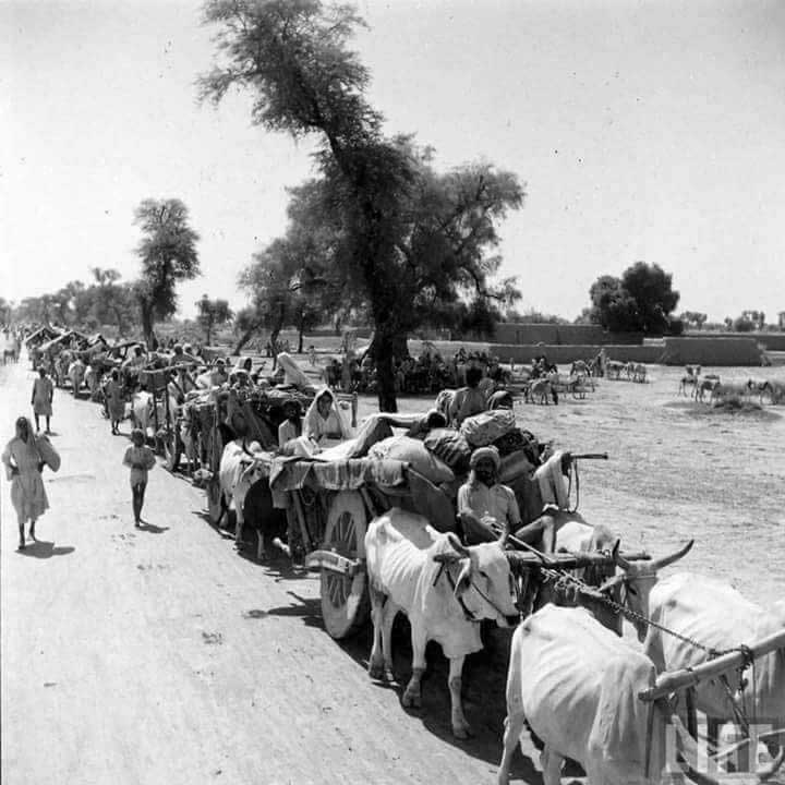 مهاجرت مرگبار میلیونی هندوها، سیکها و مسلمانان پس از استقلال پاکستان و هند از بریتانیا در 1947 میلادی