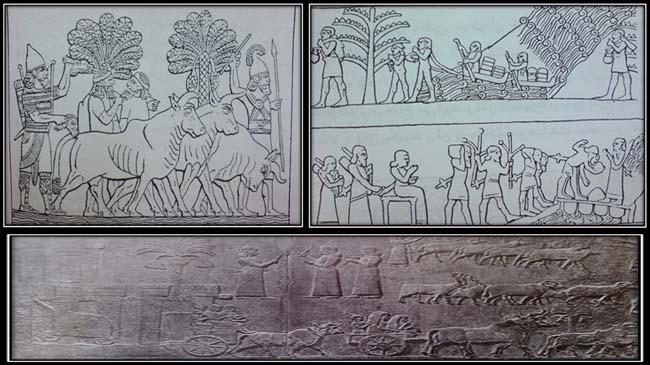گرفتن غنایم وبرده توسط آشوریان